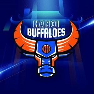 Hình ảnh nhận diện thương hiệu mới của Hanoi Buffaloes